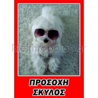 Ταμπέλα Προσοχή σκύλος - εικόνα επιλογής πελάτη νο1 Ταμπέλες - επιγραφές - αυτοκόλλητα